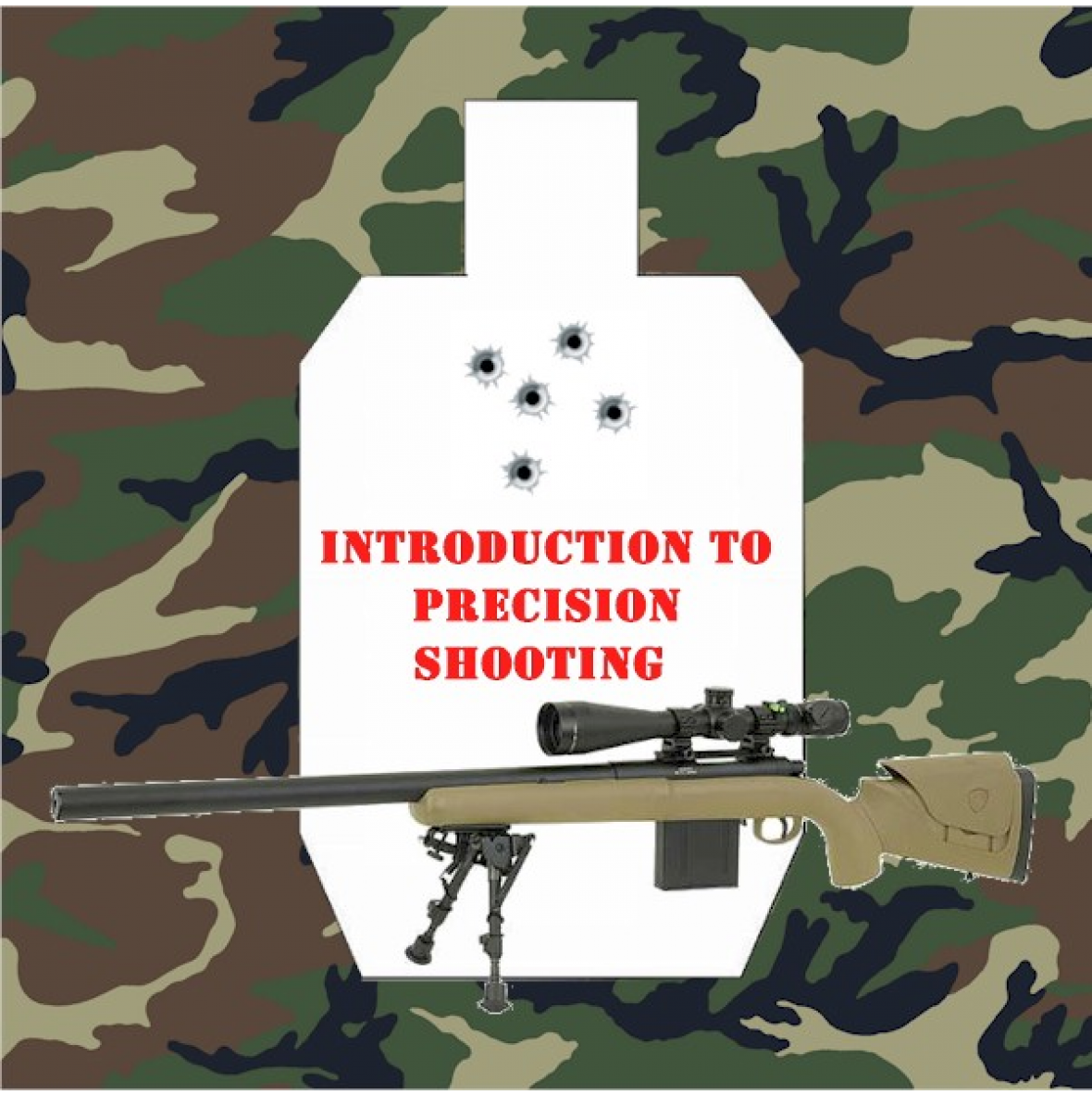 introduction to Precision Shooting